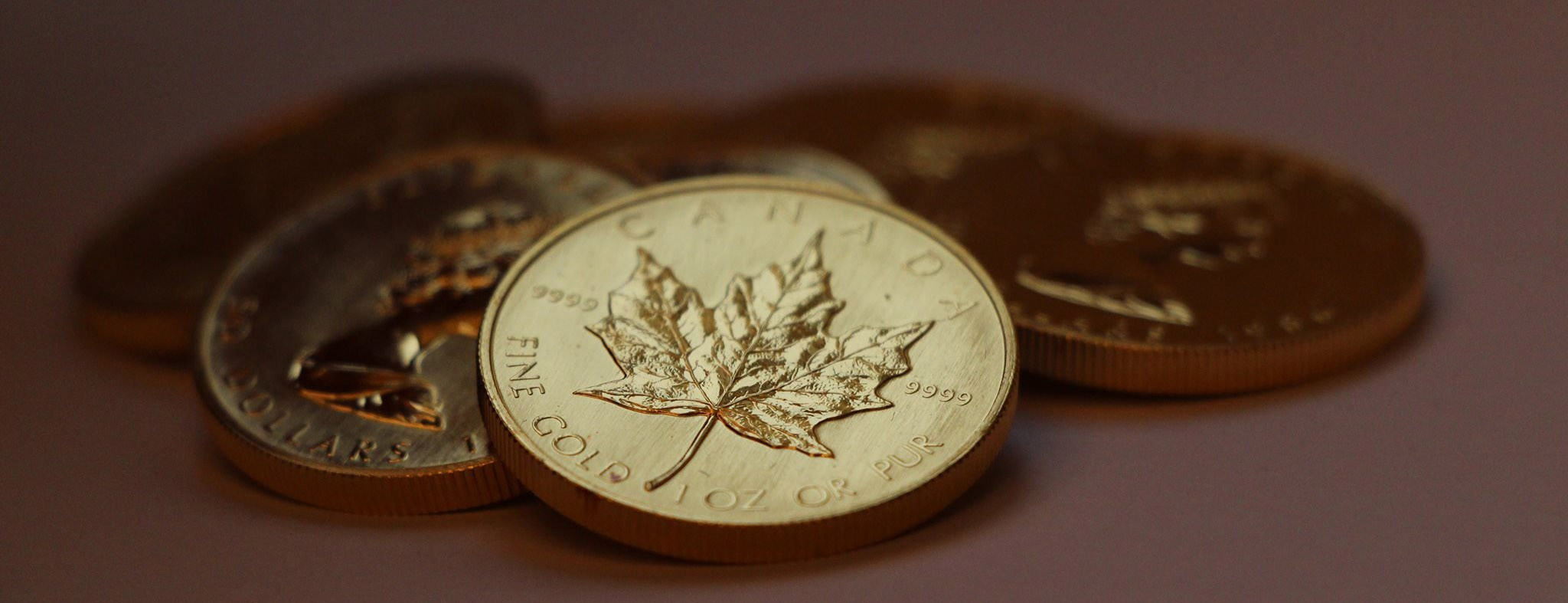 gold coins maple leaf
