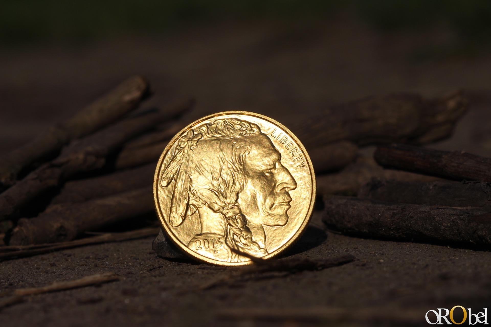 photo HD par orobel de la pice dor American Buffalo gold 1