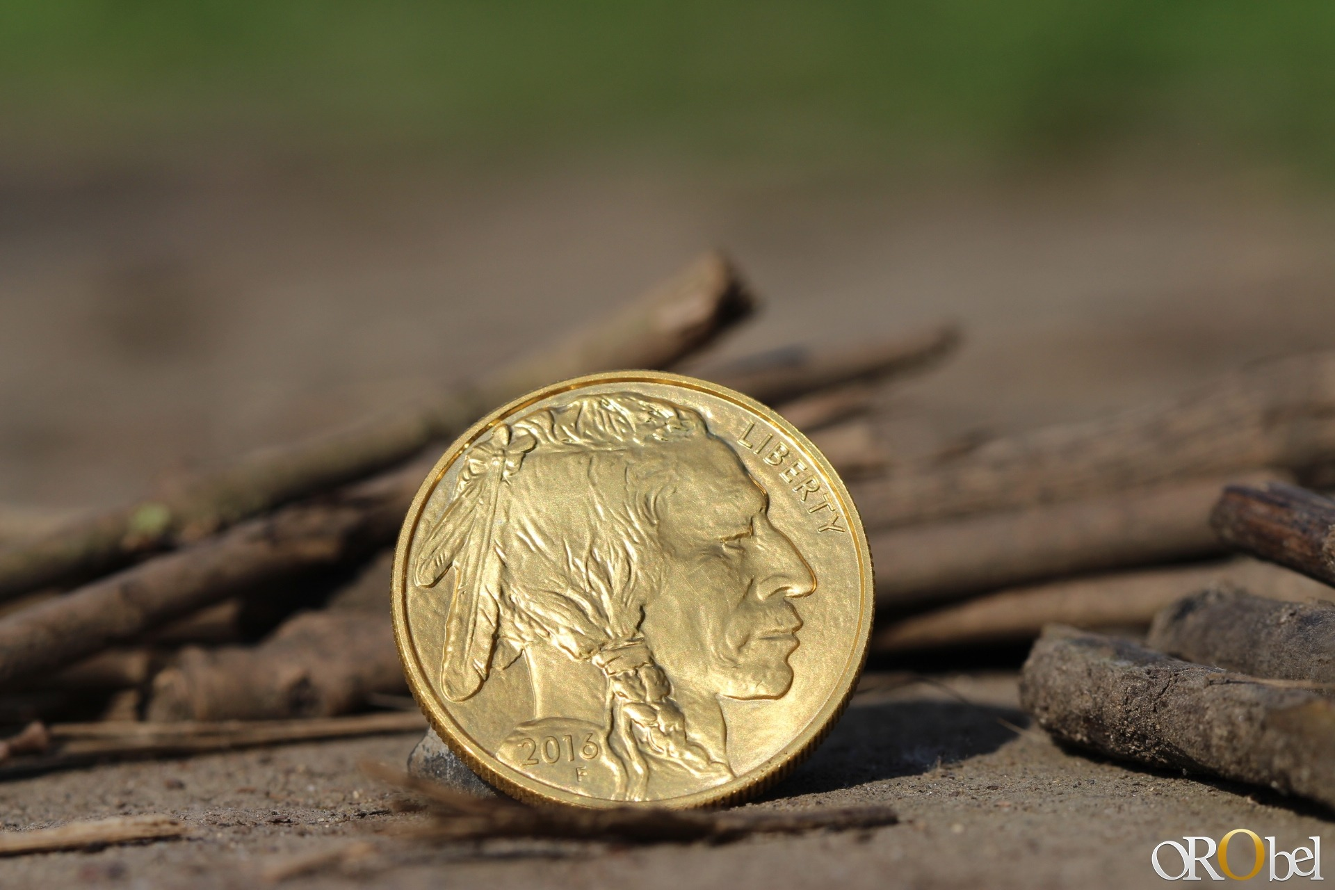 photo HD par orobel de la pice dor American Buffalo gold 2