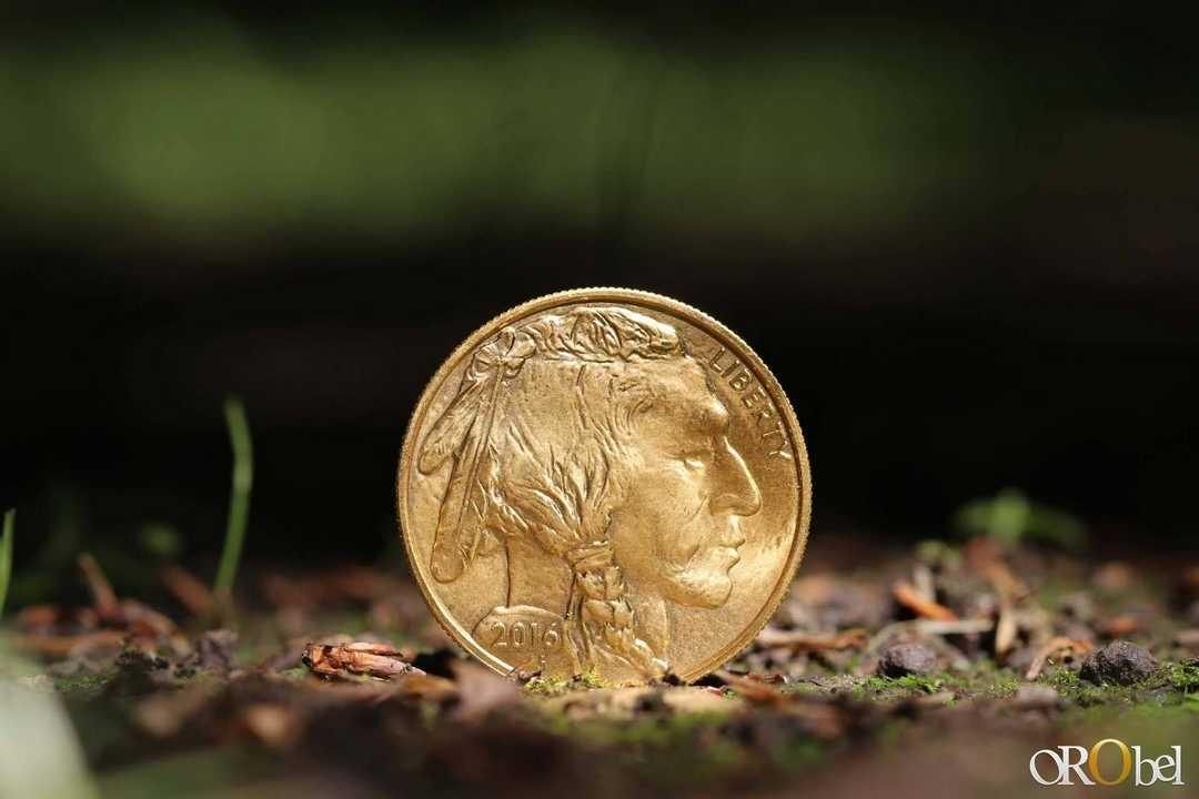 photo HD par orobel de la pice dor American Buffalo gold 3