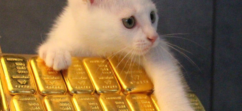 Vendre de l'or à domicile - Orobel Gold & Cat