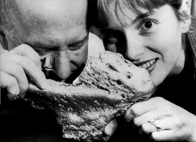 Riesen-Nugget steht zum Verkauf. Das groesste bekannte australische Nugget, Cibdy's Pride steht zum Verkauf. 91.000 US $ Dollar (145.000 Mark) muss der potentielle kaeufer hinblaettern, wenn er den, 1985 von Glen Sampson im Bundesstaat Victoria gefunden und 5,12 Kilo schwere Goldklumpen erwerben will. Der letzige Besitzer John Duck und seine Tochter Kerrell, von der Firma Goldquest nehmen das gute Stueck am Mittwoch (26.9.1990) in Sydney nochmals genau unter die Lupe. (AP-Photo/Tad Golding) 26.9.1990