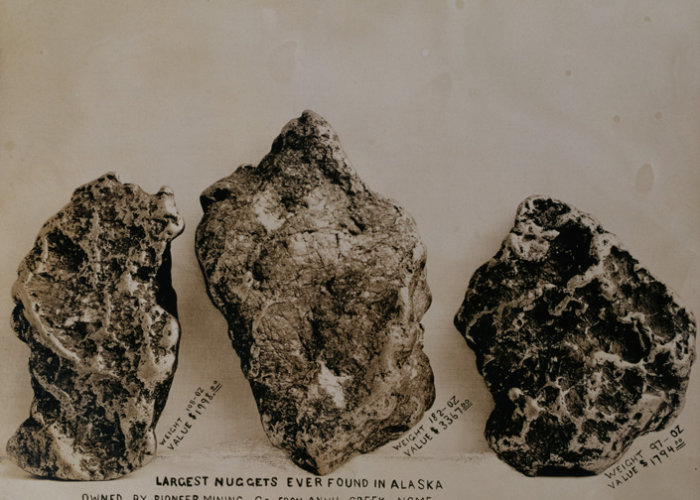 ca. 1904, Nome, Alaska, USA --- In 1904 the three largest gold nuggets found in Alaska, weighed 108 oz., 182 oz., and 97 oz. which at that time were worth $1998.00, $3367.00, and $1794 respectively.  Found in Anvil Creek, Nome. --- Image by © Michael Maslan Historic Photographs/CORBIS