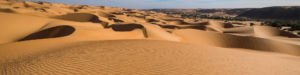 desert sec